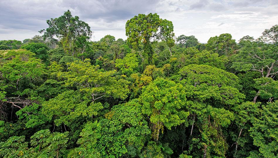 Ympäristövastuullisesti uuteen vuoteen